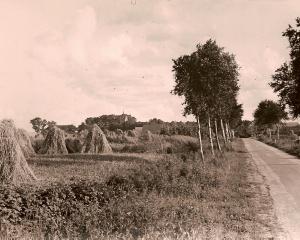 Anloo,Schipborgerweg.jpg